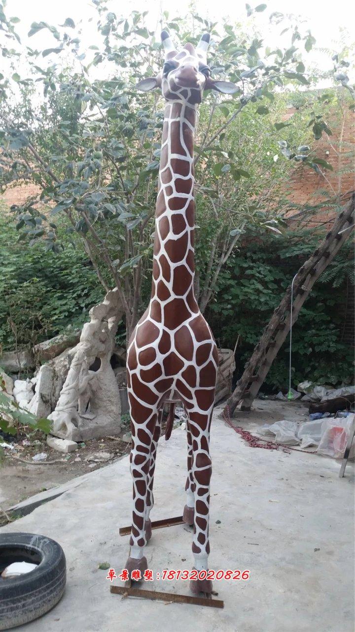 玻璃钢长颈鹿雕塑,玻璃钢动物