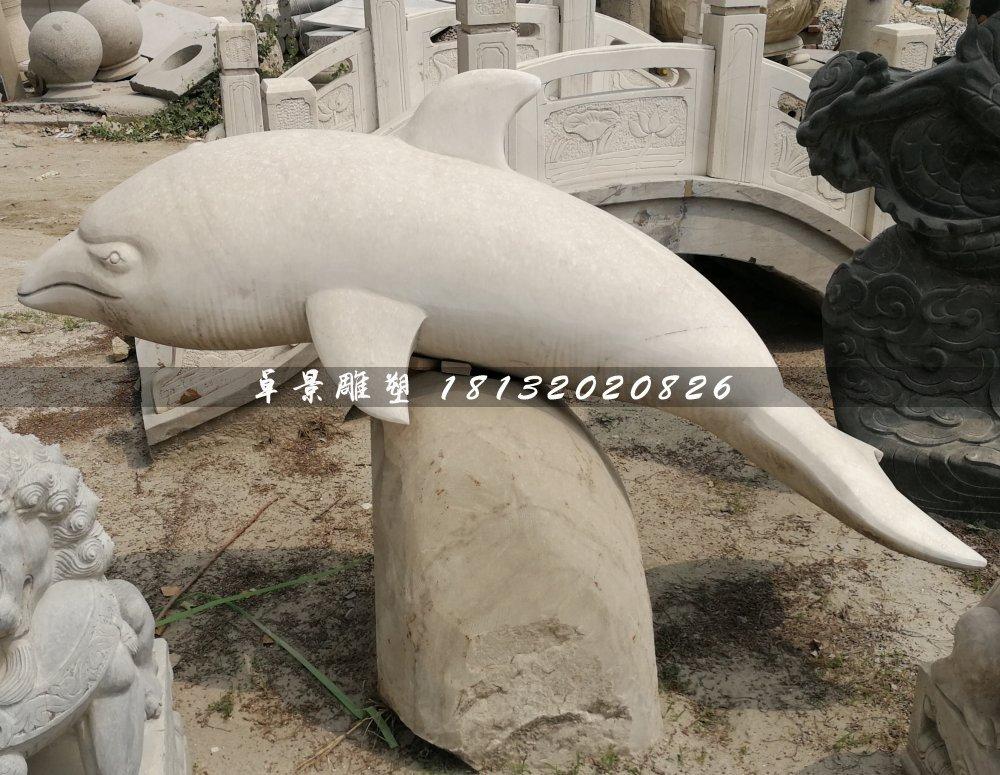 白海豚石雕,公园动物石雕