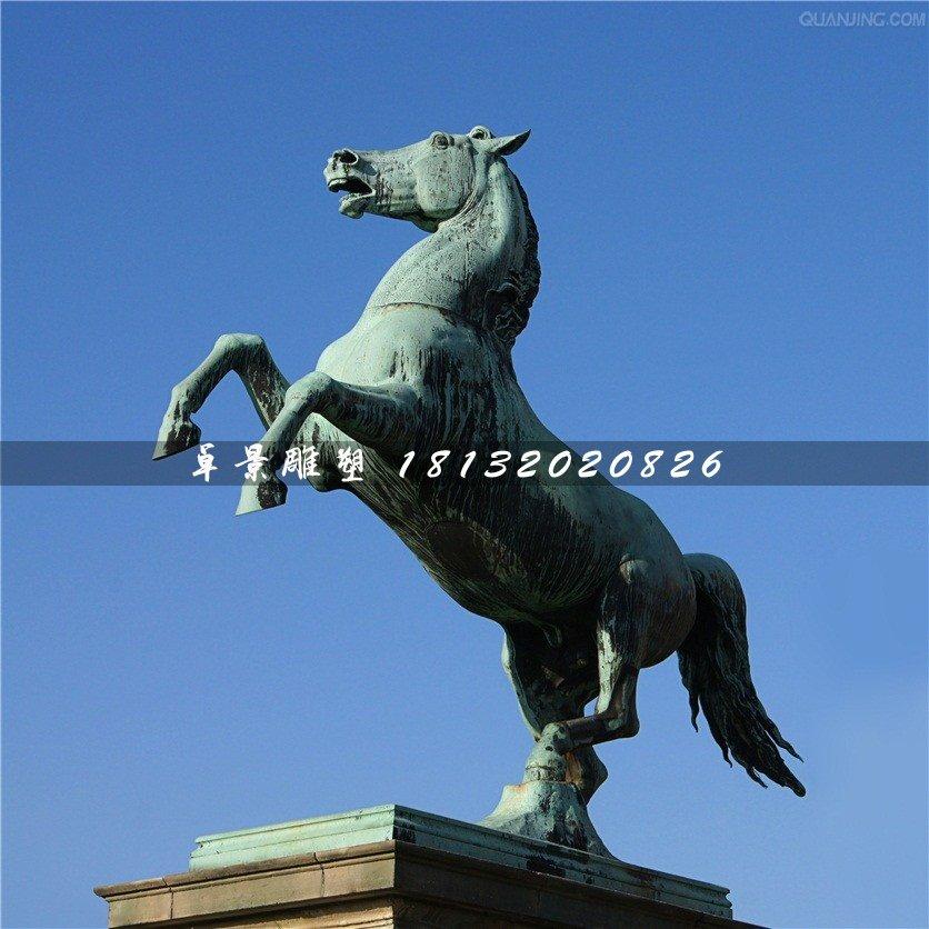 青铜马雕塑,广场立马铜雕