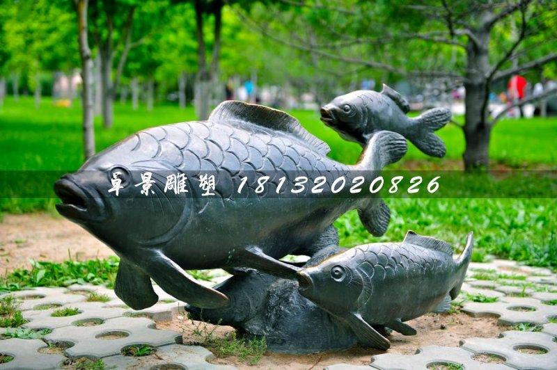 铜雕鱼,公园动物铜雕