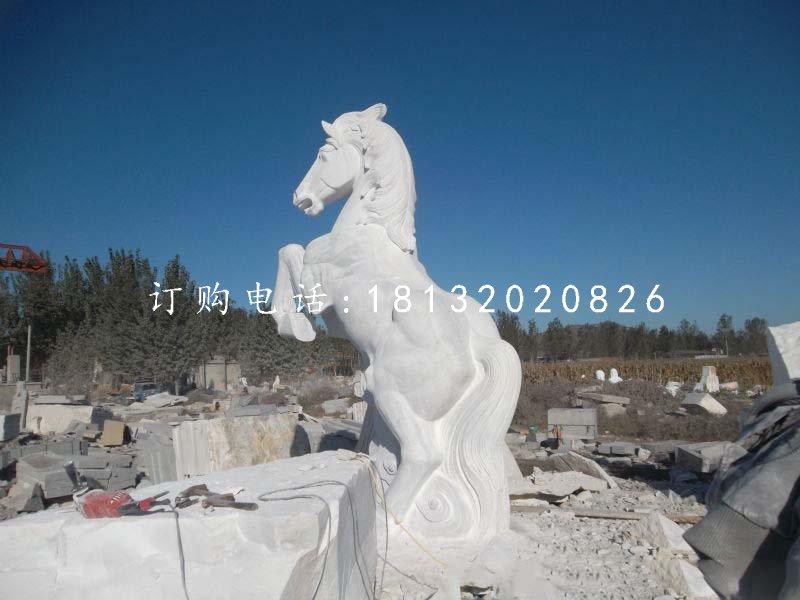立马石雕,汉白玉动物雕塑
