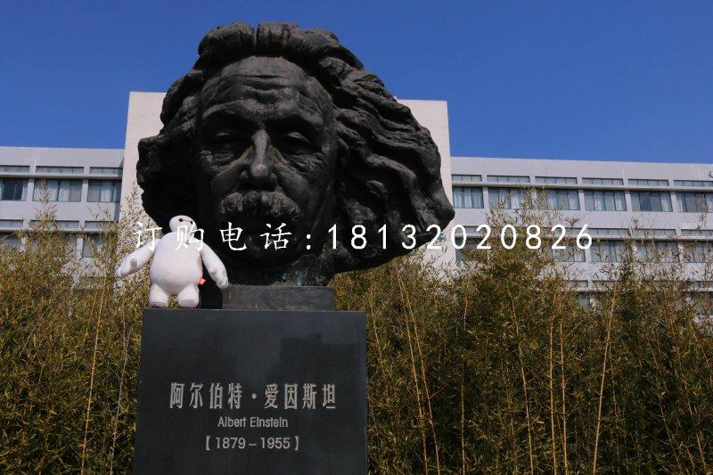 爱因斯坦头像铜雕 校园名人铜雕
